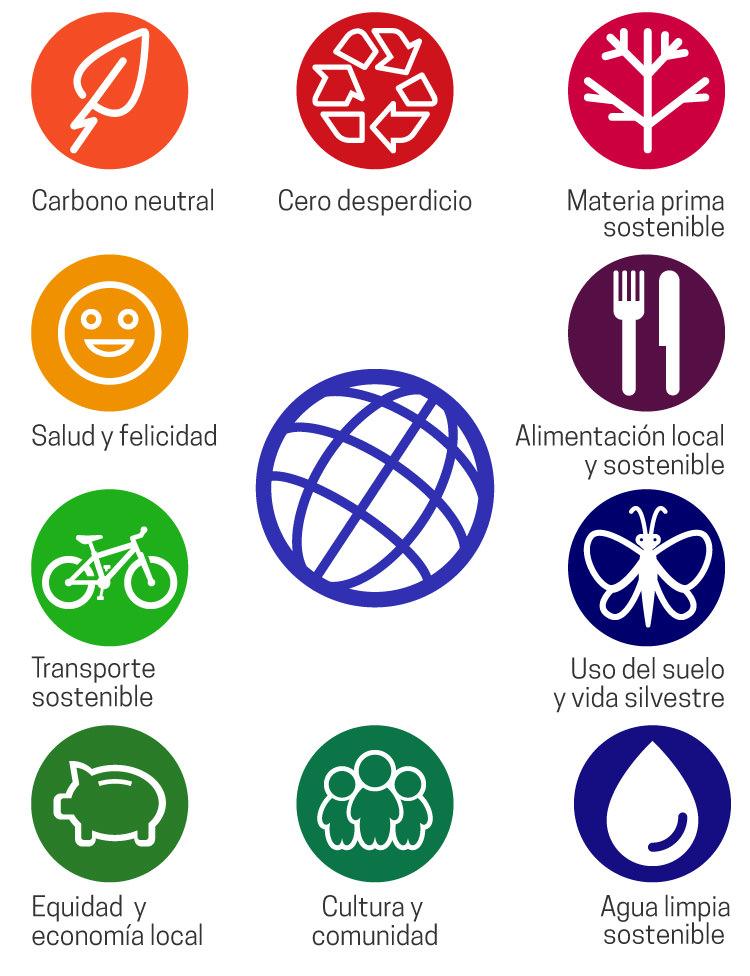 infografico-iconos