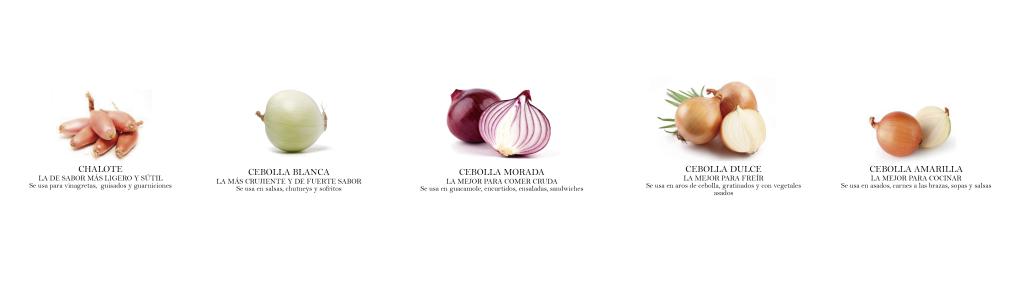 cebollas-01-01