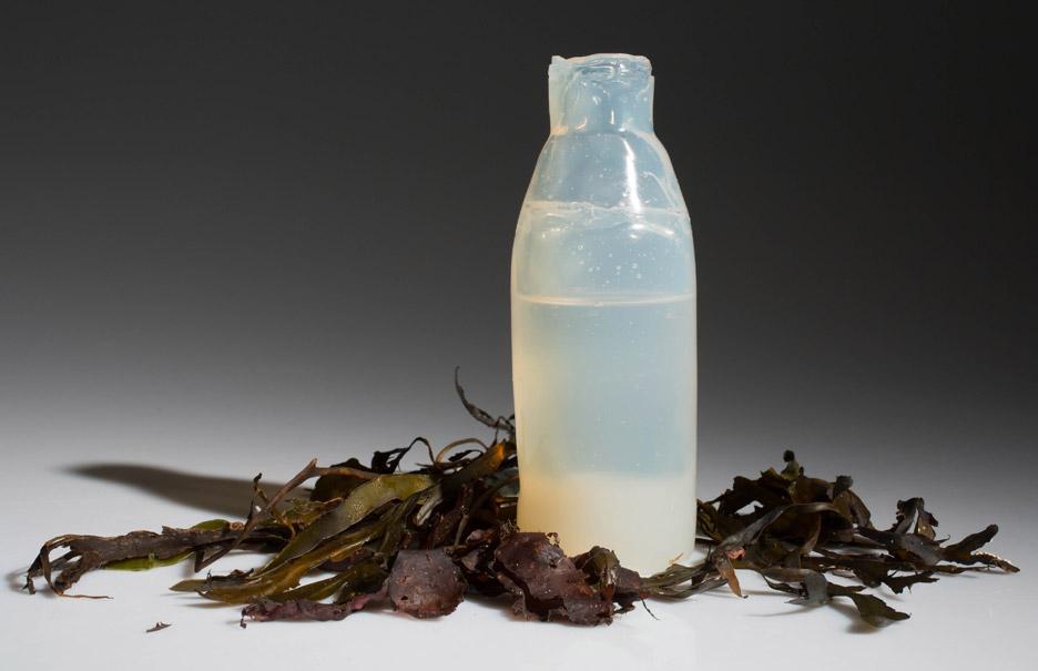 Botella de algas. Imagen de DesignMarch.