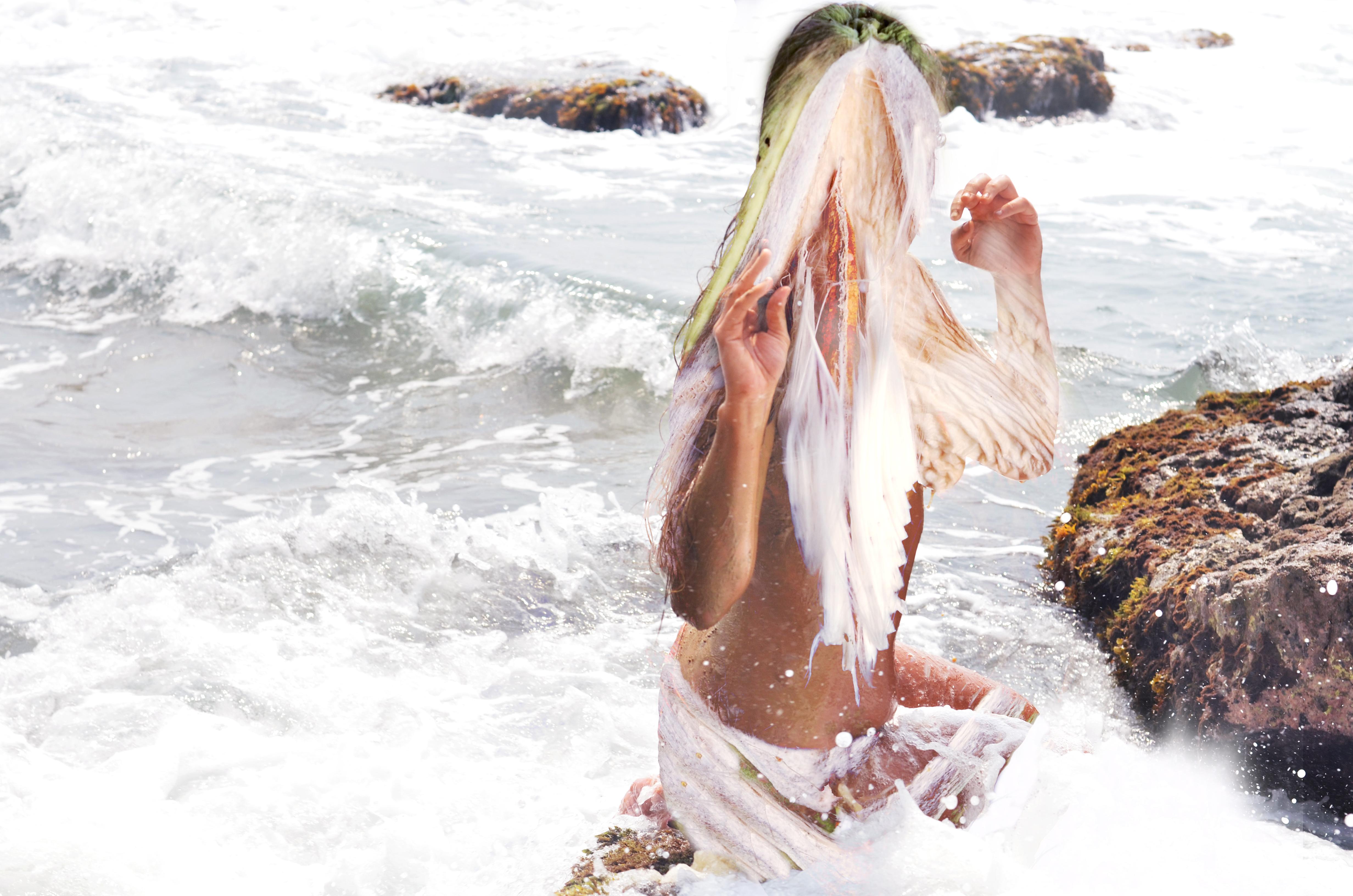 DSC_7798 sirena